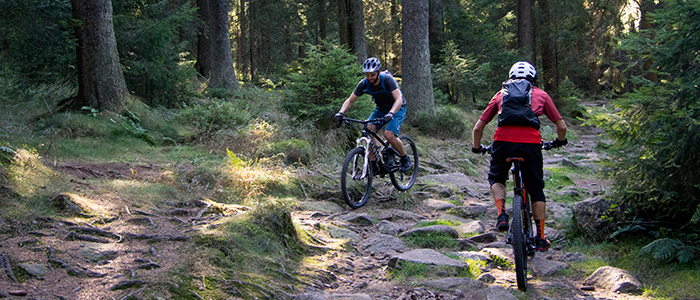 Zwei Mountainbiker begegnen sich auf einem schweren Trail nahe Torfhaus