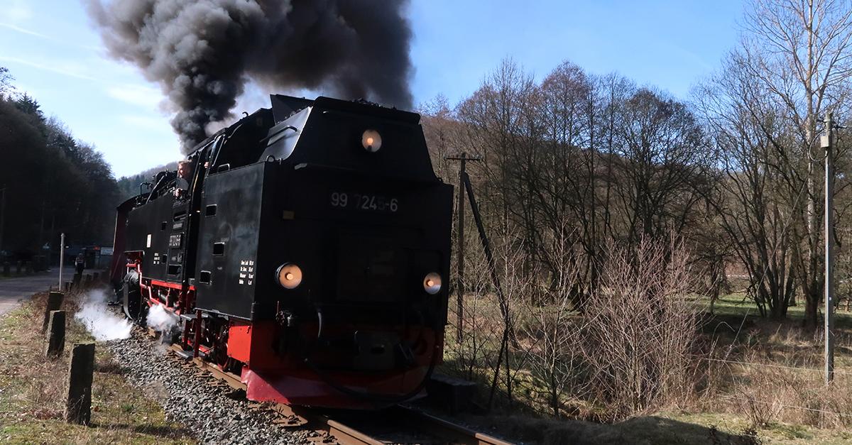 Die Harzquerbahn bei Netzkater