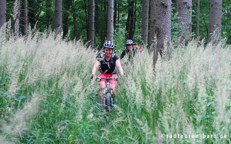 Zwei Mountainbiker im hohen Gras