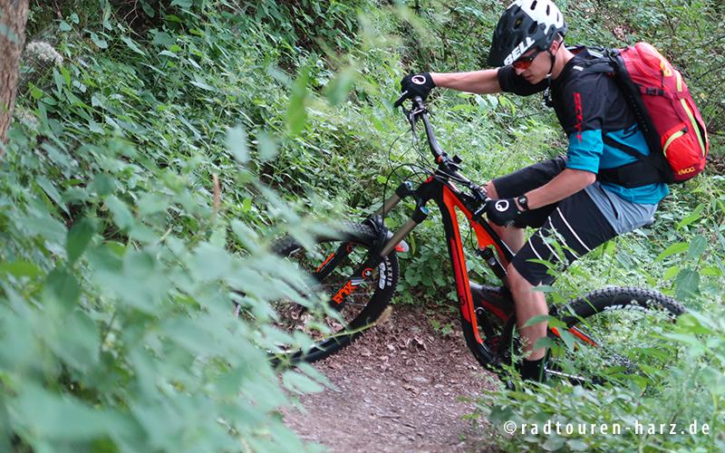 Ein Mountainbiker im Harz