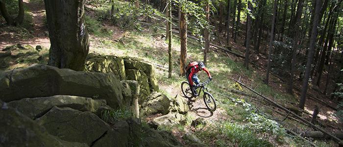 Mountainbiker bei Bad Harzburg