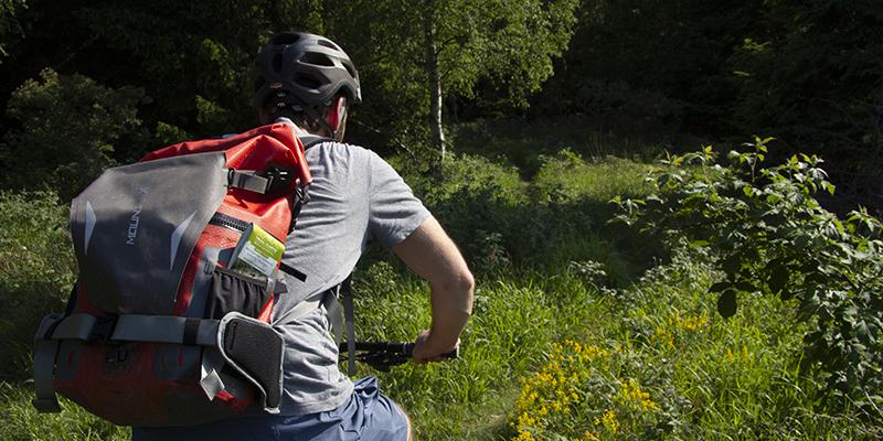 Ein Mountainbiker bei Wernigerode