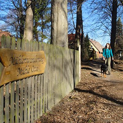 Auf dem Mühlen-Wanderweg im Harz