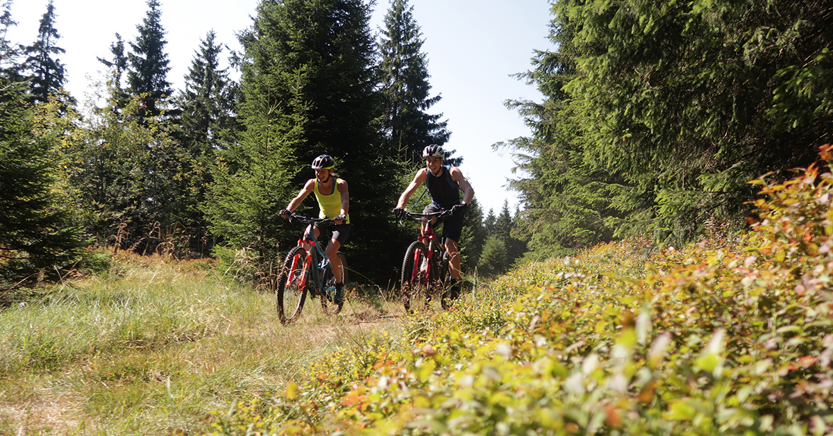 Trail bei St. Andreasberg