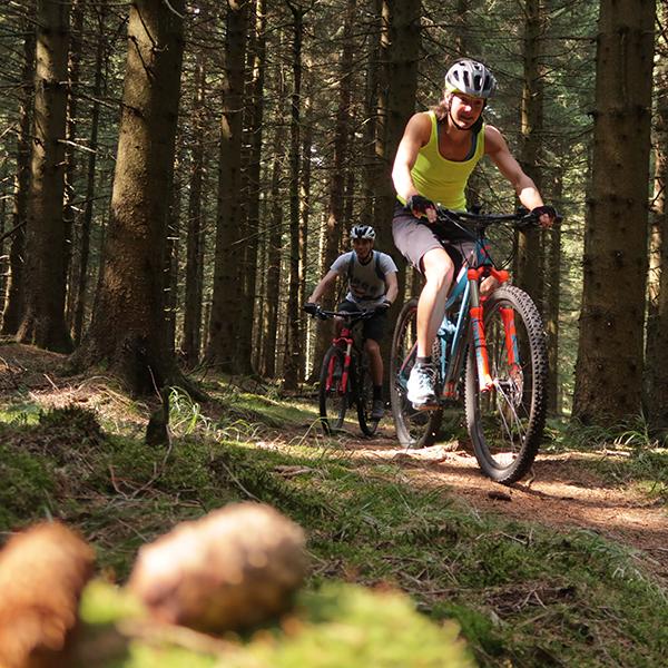 Mountainbiker bei Torfhaus