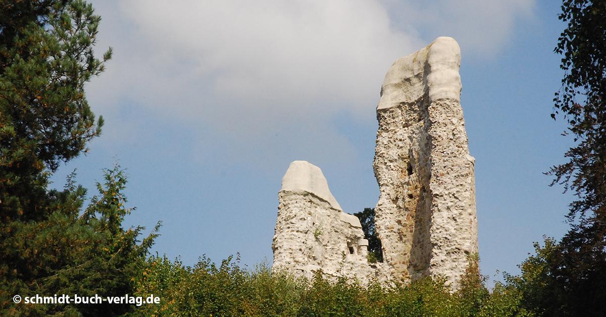 Ruine Reichsburg bei Osterode
