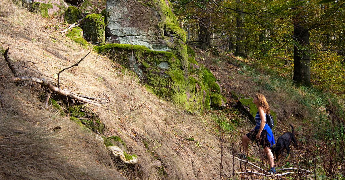 Eine Wanderin begutachtet einen Felsen am Südharzer Dampfloksteig