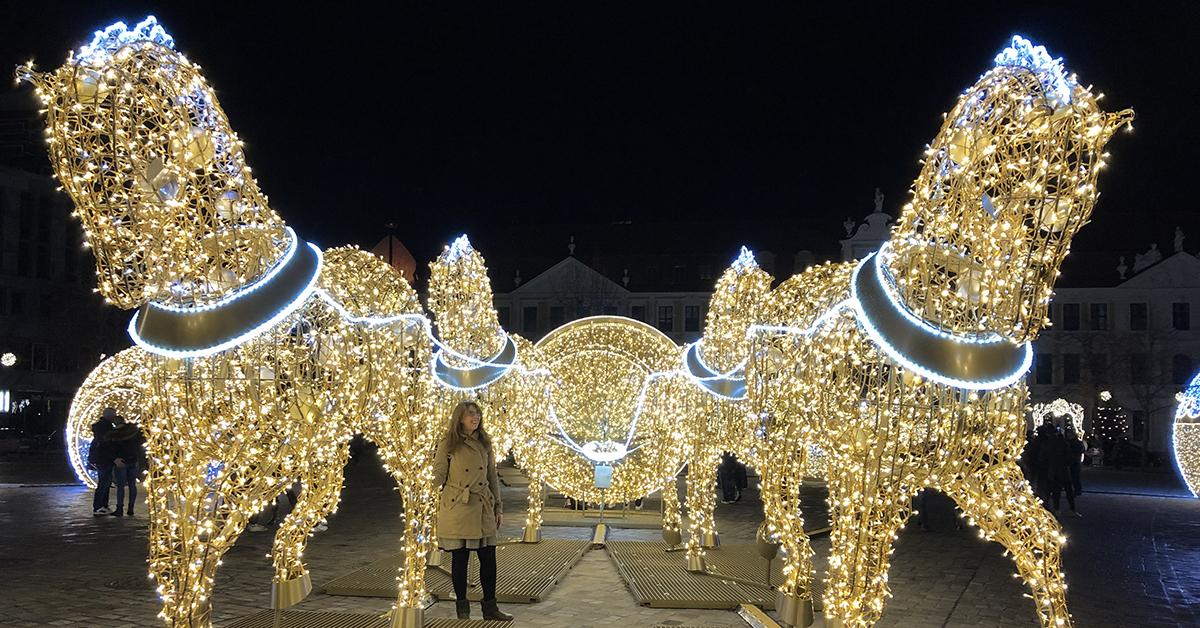 Auf dem Domplatz in Magdeburg stehen im Dunkeln Rösser aus Lichtern