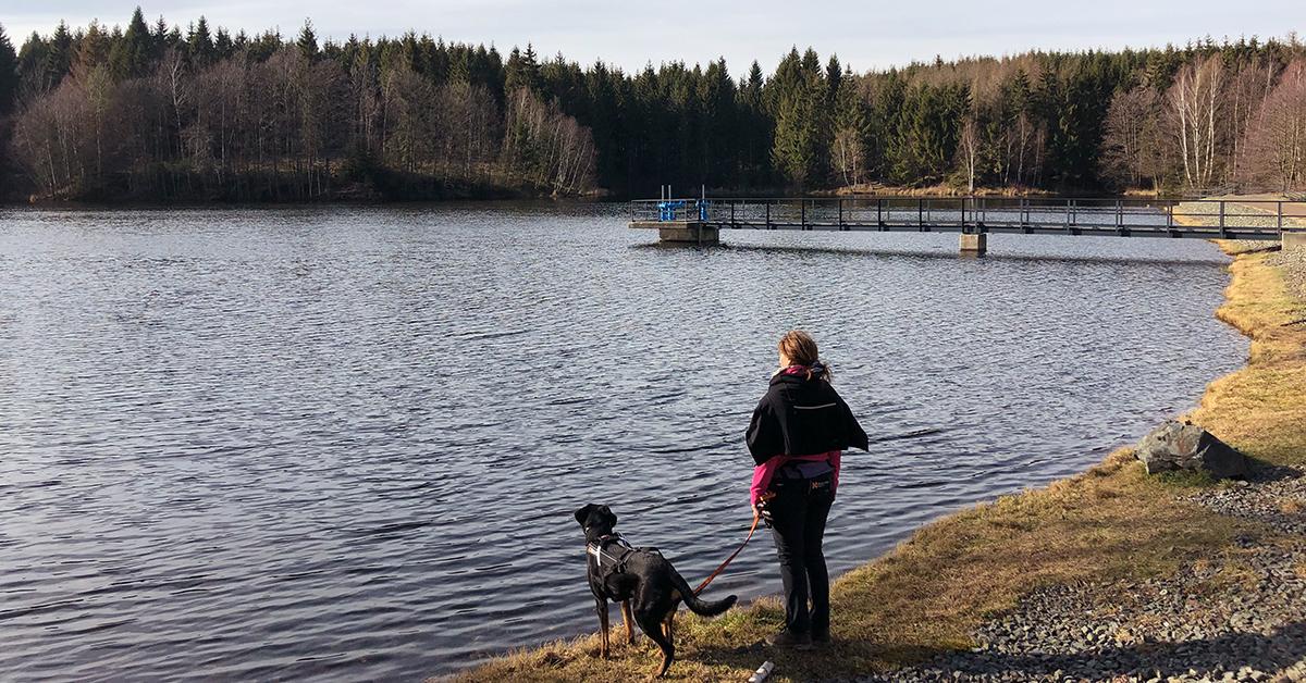 Wanderin steht am Ufer des Bremer Teichs im Harz